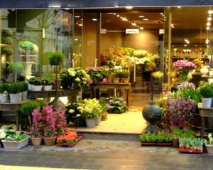 cumpar florarie, florarie de vanzare